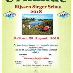 Urkunde Holten, 26.08.2018 - V1 - Rijssen Sieger Schau 2018