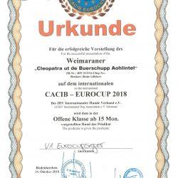 Urkunde Rodenkirchen, 14.10.2018 - V1 - Eurocupsieger