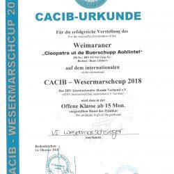 Urkunde Rodenkirchen, 14.10.2018 - V1 - Wesermarschsieger