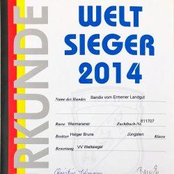 Urkunde Welt Sieger 2014 Bendix