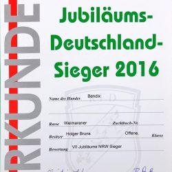Urkunde Jubiläums-Deutschland-Sieger 2016 Bendix