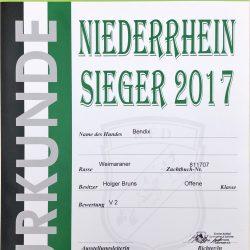 Urkunde Niederrhein Sieger 2017 Bendix