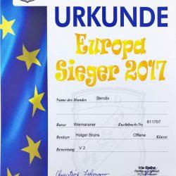 Urkunde Europa Sieger 2017 Bendix