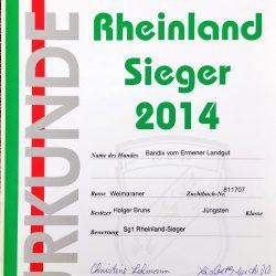 Urkunde Rheinland Sieger 2014 Bendix