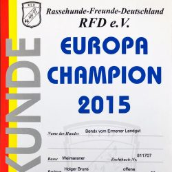 Urkunde Europa Champion 2015 Bendix