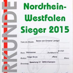Urkunde Nordrhein-Westfalen Sieger 2015 Bendix